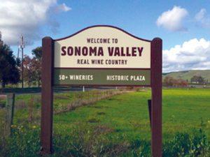 Sonoma Custom Wine Tour
